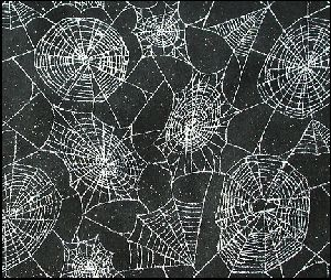 spiderweb3-small